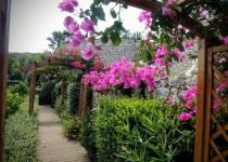 Blomsterportaler, Knossos 3